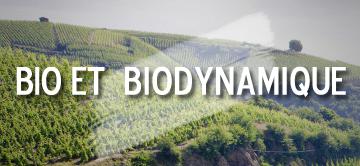 Vins bio et biodynamique