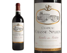 CHÂTEAU CHASSE-SPLEEN 2007 rouge