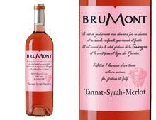 DOMAINE ALAIN BRUMONT Tannat Merlot Syrah Rosé 2010